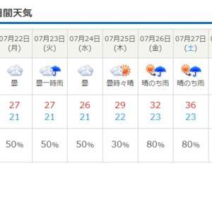 来週は晴れ??!!🌞暑い夏がやってきます!!!!