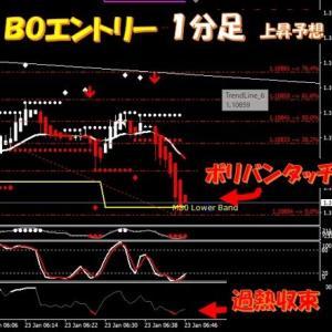 新着!★FX取引+3万900円★BO取引3戦3勝+127,500円