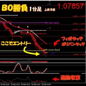 新着★FX取引+4万1400円★BO取引3戦3勝+135,000円