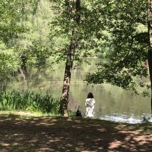 湖へGO と 犬との生活
