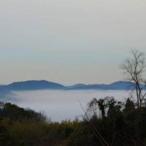久しぶりに我が家からの【雲海】風景