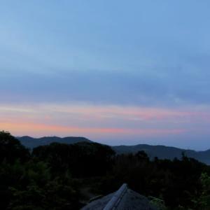 【雲海】とキキョウソウの花