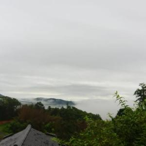【雲海】風景とツバメの雛の横顔
