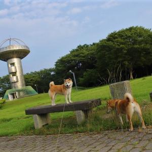 ★ 久しぶりの公園 ★