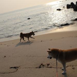 ★ 朝の海 ★