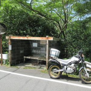 静岡県 西伊豆町 旧大沢里小学校(おおそうり)