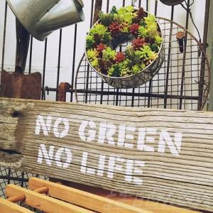 植物の為のDIY|空き家をリフォーム! ここに「植物情報発信基地」を造り、植物男子&女子を増やしていこう!