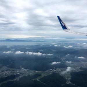 東京出張と竹の伐採終了