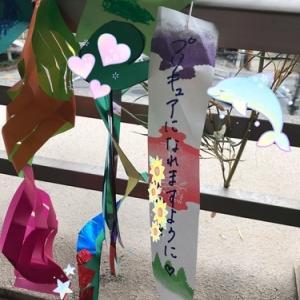 【プリキュア】キュアコスモのおもちゃ新登場★熱くフラワーがごちゃごちゃと大紹介!☆スタートゥインクルプリキュア