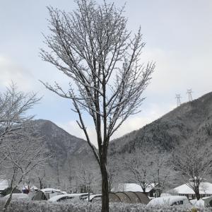 早春キャンプ大会はまさかの雪中キャンプ大会 3月NEOキャンピングパーク