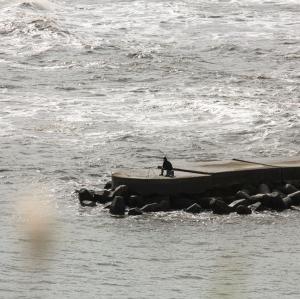 【悲報】立入禁止の危険な防波堤、釣り人をうっかり10年で68キルしまう