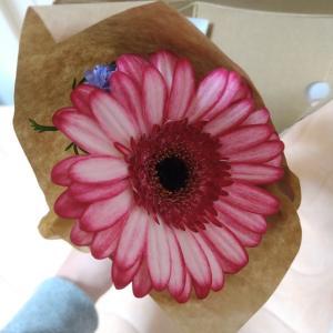 フラワーロスからお花を救う!ときめきが続く、お花の定期便bloomee