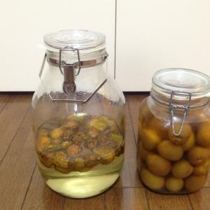 今年の梅仕事 梅シロップ・梅の酢漬け