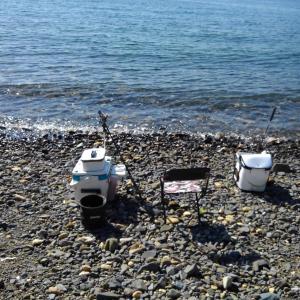 今年は藻が少なくて釣りやすい