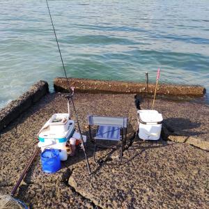 いつもの渚で釣れず初めてのゴロタ浜へ