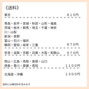【オンライン】オンラインレッスンに関する送料について♡