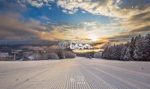 シーズン券が格安!白馬さのさかスキー場!インフォメーションカウンターで1月末まで購入可能