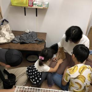☆お見合い〜TNR現場で出会った女性家族☆