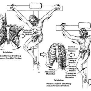 贖罪の玄義[歴史編] 死して葬られ 【公教要理】第四十四講