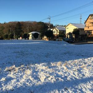 やったー雪が降ったよ。