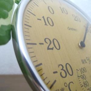 リビングにおしゃれな温湿度計を♪ナチュラルウッドなアンティーク調のドリテックアナログ温湿度計がおすすめ!