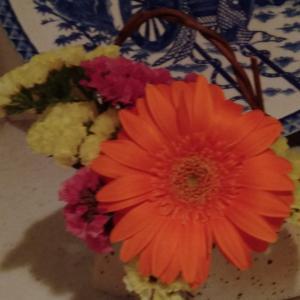 新型コロナの為に花屋さんがピンチ!今こそ家に花を飾ろう