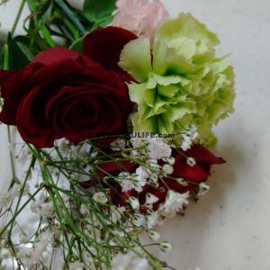 これって運気アップの前兆?お花がお花を呼んでくれました