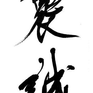 樵舟、時を超えて・・・康有為、景嘉、樵舟へと伝わる真髄の書論