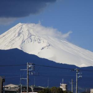 伊豆旅行2 三島駅・富士山・魚がし鮨