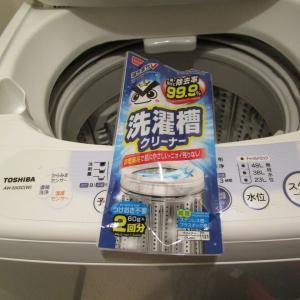 洗濯層掃除とフキの煮びたし