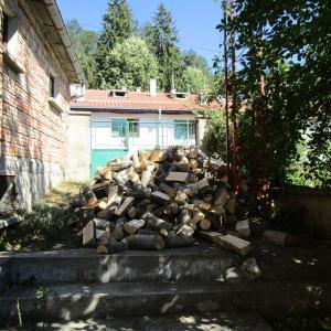 ブルガリア生活 冬支度と焼き豚と魚