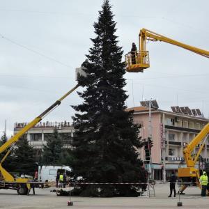 大きなクリスマスツリーとシプカの大雪