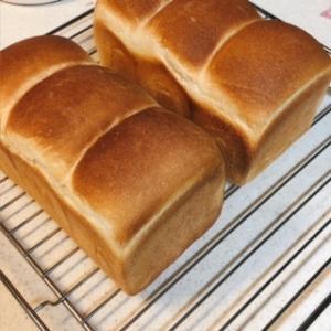【手ごねパン】食パンが気軽に焼けるようになりました!