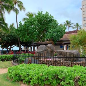 年末ハワイ7:D**ロイヤルハワイアンセンターも福袋