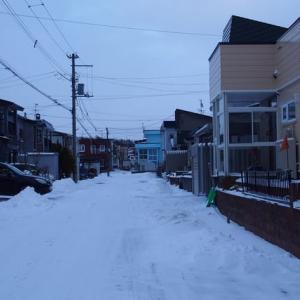 雪積もる真冬日