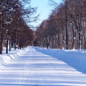 冬晴れの日に