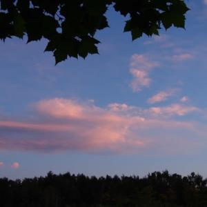 真夏日の夕暮れ