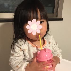 1歳8ヶ月 双子の食事にやられています(T-T)