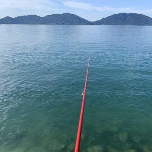 今朝は畑仕事じゃなくてイカ釣りに行きました。