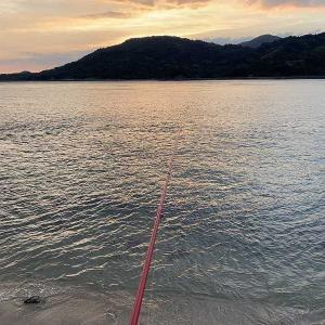 夕方からもイカ釣りでした。