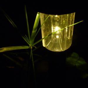 ダイソーの庭用ソーラーライトでメダカ屋外水槽の風情を