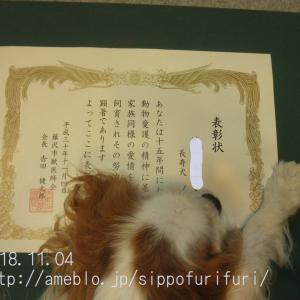 長寿犬表彰式、15歳だ…わん