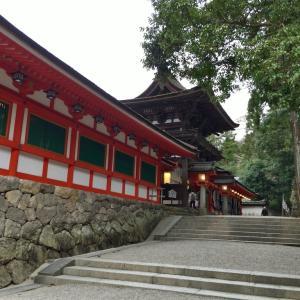 """【奈良】色とりどりのニワトリがたくさん!""""日本最古の神宮""""石上神宮"""