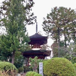 【奈良】橿原神宮近くの由緒あるお寺 久米寺(橿原市・御朱印)