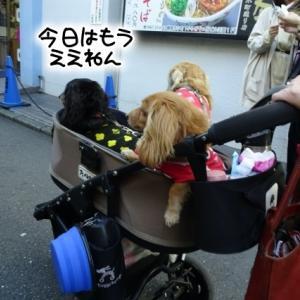 鎌倉行ってきた。