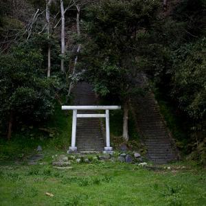 春、早朝の鎌倉を歩く♯2