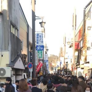 わんこと鎌倉旅行