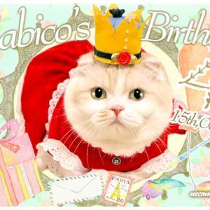 まびこ4歳の誕生日~お祝いのご馳走はモンプチブティックのティーパーティー♪~