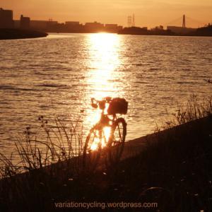 月間走行距離3000km( 自転車 )