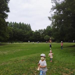 ボール遊びを楽しめるおススメの公園〜静かで自然も満喫できます〜